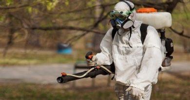 Оперативная информация по поводу укусов клещей в Волковысском районе по состоянию на 27 мая