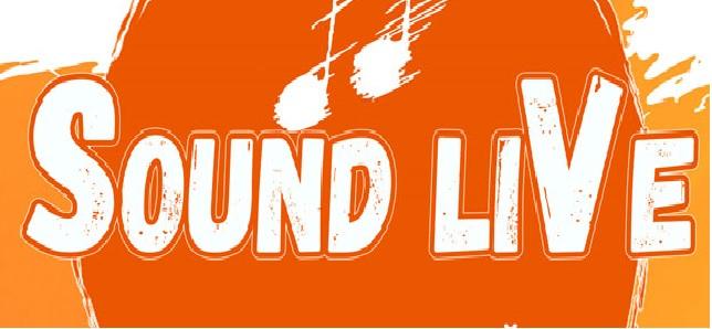 Самое яркое событие лета 2021! Музыкальный фестиваль «SOUND LIVE»